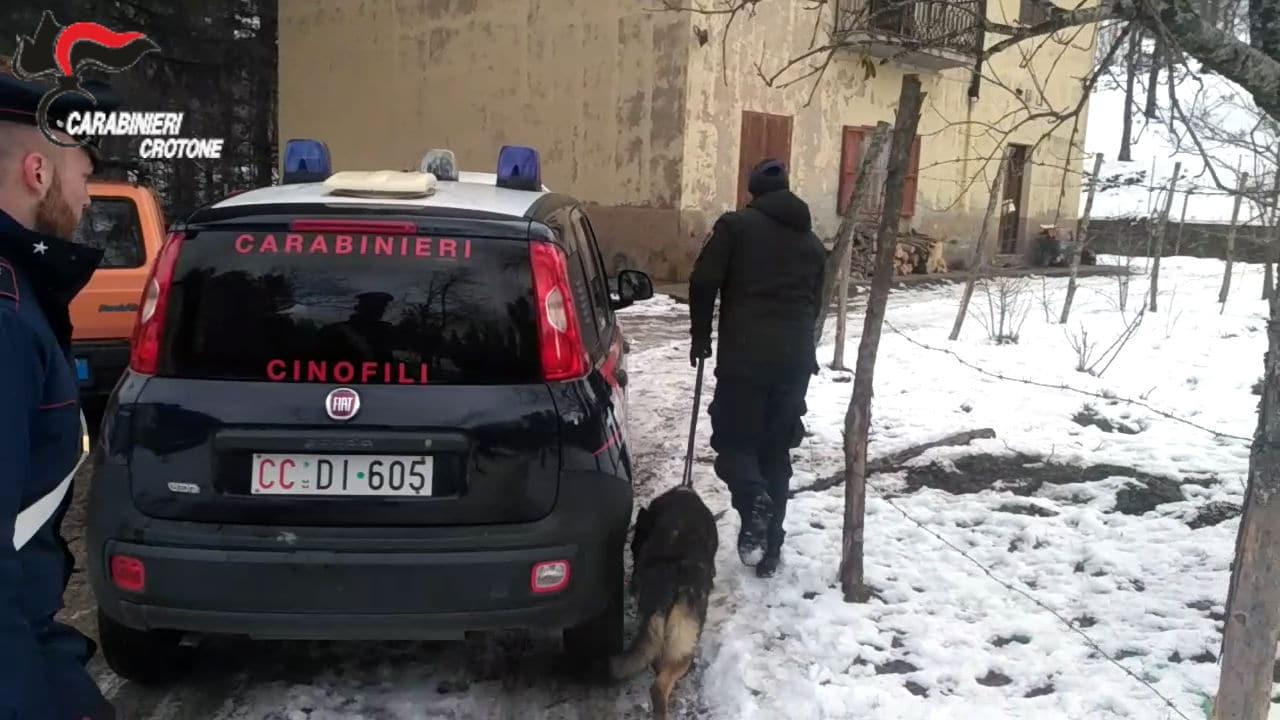 Ufficio Del Lavoro In Nero : Lavoro nero e irregolarità carabinieri e ufficio del lavoro passano